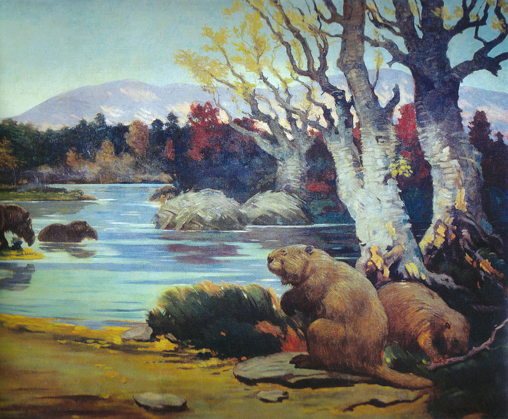 By Charles R. Knight [Public domain], via Wikimedia Commons