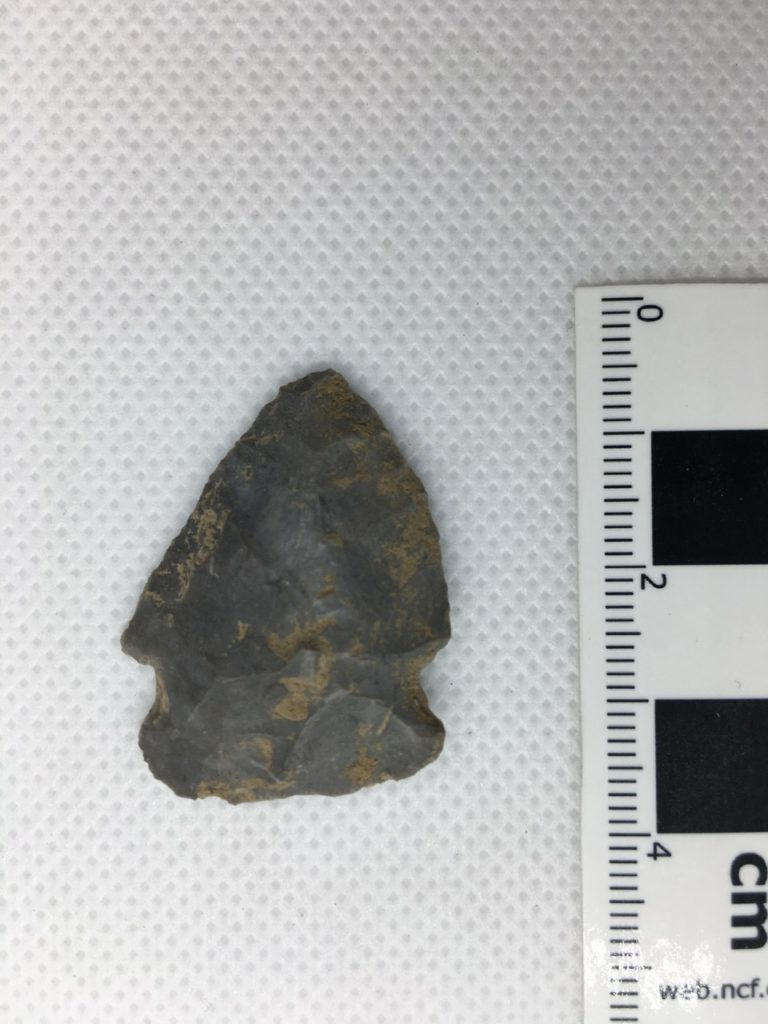 Side-Notched Projectile Point
