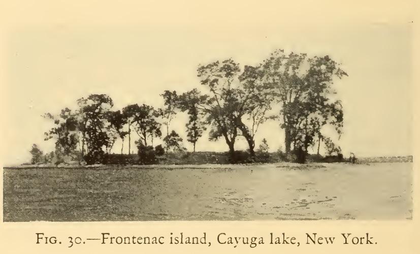 Frontenac Island. Source: Cadzow 1925