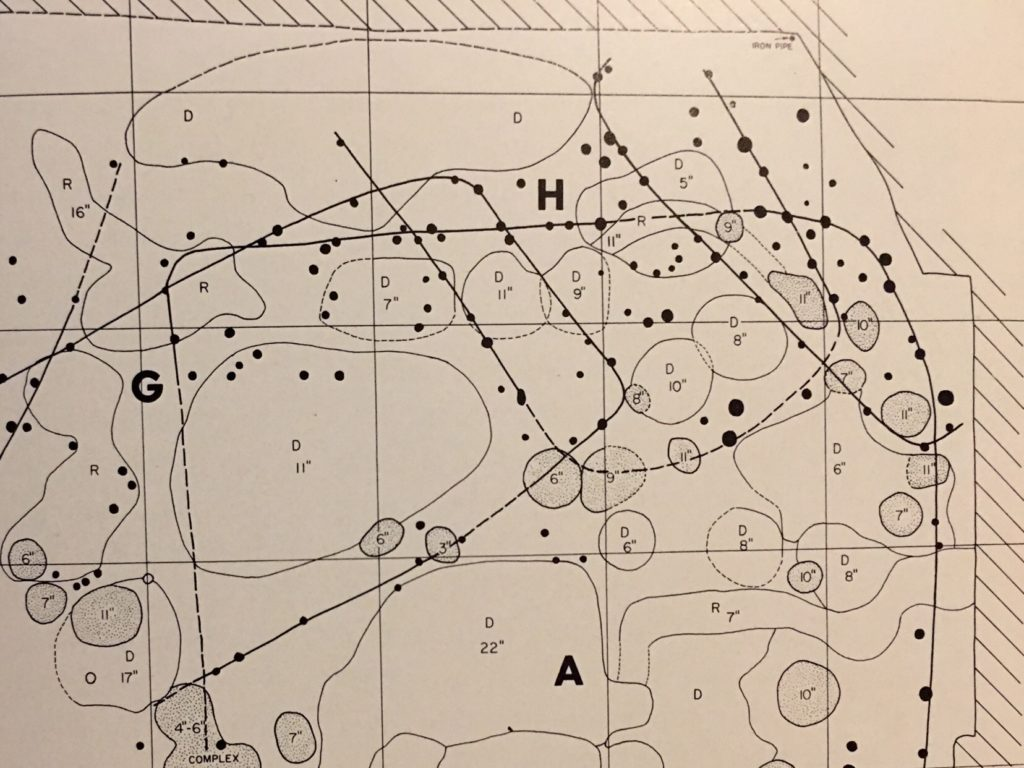 Plan map of 1962 excavations at Lamoka Lake
